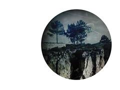 Quem ps as formas das rvores dentro da existncia das rvores? (P. Correia) Tags: trees portugal fernandopessoa 2013 pcorreia vilapoucadeaguiar lvarodecampos iphone3g tresminas