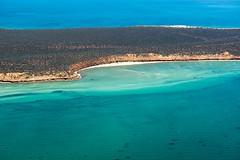 Shark Bay WA -DSC3215