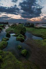 Las verdes barbas de Barrika (Alfredo.Ruiz) Tags: ocean sunset sea sky green rock clouds spring spain alga