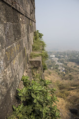 more greenwalls (Tin-Tin Azure) Tags: world india heritage temple unesco archaeological mata gujarat pavagadh kalika champaner