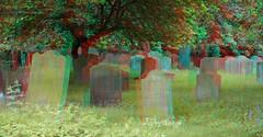 Graveyard Saint Mary's Abbey York 3D (wim hoppenbrouwers) Tags: york abbey graveyard saint 3d anaglyph stereo marys redcyan saintmarysabbey york3d saintmarysabbeyyork