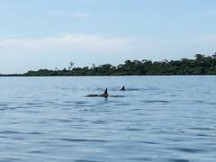 "Bahia de los Dolfines <a style=""margin-left:10px; font-size:0.8em;"" href=""http://www.flickr.com/photos/127723101@N04/26726374434/"" target=""_blank"">@flickr</a>"