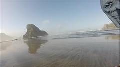 follow Blanca on Meyers Beach - one (Claudia Knkel) Tags: dog beach oregon walking blanca barefoot lowtide seastacks bordercolliemix meyersbeach gopro hero3silver