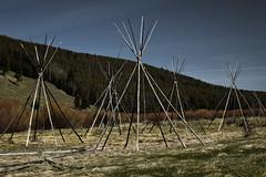 Where the Innocents Fell (cutthroatsrule) Tags: camp west big hole battlefield nez lodges perce