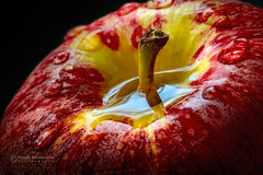The source of Hope (Dragan Milovanovic photography) Tags: life light red stilllife food macro reflection apple nature water fruits yellow closeup hope drops mood sony fineart source sonyilca77m2 sonyslta77ii draganmilovanovicphotography