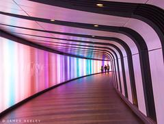 Tunnel Vision (James Neeley) Tags: abstract london subway design pattern tube tunnel kingscross stpancras jamesneeley