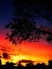 Hidden Colors (Diego S. Mondini) Tags: