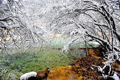 Transparent Pond (nawapa) Tags: china travel winter snow pool yellow river landscape pond dragon view scenic historic songpan sichuan huanglong calcite 2011 nawapa