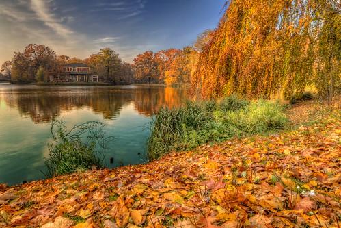 lake carola in Dresden (germany)
