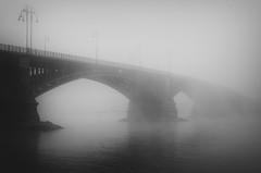 (koeb) Tags: bridge mist fog nebel brücke rhein mainz theodorheussbrücke mayence