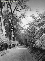 Didsbury, Stenner Lane, 15/12/1950 (archivesplus) Tags: winter snow cold ice manchester frozen freezing snowing