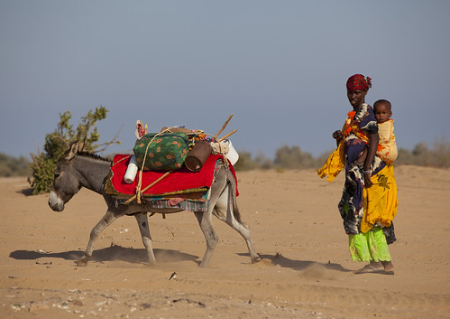 Nomad woman moving her home - Somaliland
