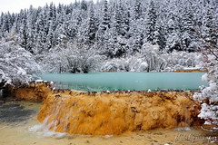 Soft and Cool (nawapa) Tags: china travel mountain snow pool forest landscape pond view place scenic songpan sichuan huanglong 2011 nawapa