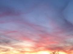 Pastel sunset (mryeatts) Tags: sunset sc lexington pastel mryeatts