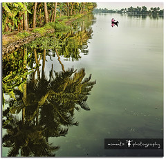 a reflective morning in Kerala .. (PNike (Prashanth Naik)) Tags: morning trees sky india reflection green water countryside boat nikon asia coconut kerala backwaters boatman alleppey alappuzha d7000 pnike