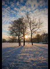 Merry Christmas.... (Chrisconphoto) Tags: park christmas trees sky snow clouds landscape walkers sthelens suttonpark merseyside goodlight contrejoure