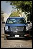 سكاليد (Fai9aL) Tags: canon 8 400 escalade 500d سيارة 2011 تصوير موتر سيارات كامل حصان فل عدسة كادلاك جيب احترافي زوم سلندر سكاليد كادلك