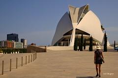 Viagens - Cruzeiro - Valncia, a presena de Calatrava (1) (Acyro) Tags: valencia arquitectura espanha calatrava acyro artescincias