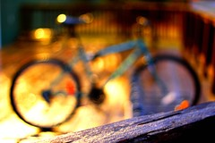 I Want to Ride My Bokeh-cycle (#1351) (protophotogsl) Tags: color lines rain bicycle wheel fence circle evening bokeh circles stripes rad spokes pluie bicicleta line soir bicyclette  fahrrad picnik vlo roti ligne sykkel fiets rower cercle cykel polkupyr bicicletta  bizikleta   sepeda bicikli   hjl basikal jalgratas bisiklet kerkpr bisikleta velosiped  dviratis  bicikl rothar  divritenis xeap bajk   jzdnkolo biciclet velosipds  protophotogsl biiklet    bisiklt  013edit