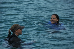 Swimming with the Dolphins at Sea Life Park Hawaii (ChicanaFeliz) Tags: slp sealifepark makapuubeach zulma wholphin swimmingwiththedolphins waimanalohawaii swimmingwithdolphinsinhawaii dolphinroyalswim keikaimalu ridingthedolphins