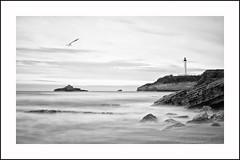 El faro (La ventana de Alvaro) Tags: faro mar bn gaviota biarritz aquitania afiiae