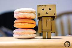4/52: Three Macarons Tall (aebphoto) Tags: canon cookie dof desserts 452 week4 macarons danbo canon50mm niftyfifty project52 frenchdesserts frenchcookie week452 pumpkinmacaron danboard rebelxsi rebel450d revoltechdanbo danboproject projectdanbo littledanbo worldofdanbo danbo52 whitechocolatemacaron
