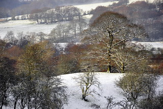 An English Winter landscape