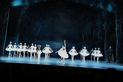 Ballet de l'Opra National Tchakovski de Perm @Grand Thtre de Provence By McYavell - 120124 (4) (McYavell) Tags: aixenprovence lelacdescygnes grandthtredeprovence 24012012