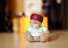 Is it  hat or crown? (KaterRina) Tags: bear toy 50mm14 oneobject365daysproject pukatukas