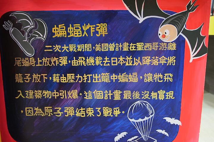 雲林水林黃金蝙蝠生態館(誠正國小)0023