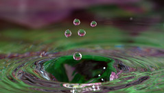 water droplets (Max Gerber Smith) Tags: waterdroplets 112in2012