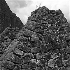 House Detail (Dave_Davies) Tags: house peru archaeology machu picchu inca america square mono ruins south valley latin sacred format gable