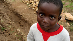 Marcus (albinobobman) Tags: poverty portrait cute kid child path innocent poor uganda