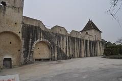 Fortification de Provins 77 France (2) (hube.marc) Tags: france nikon europe village fort age jolie fortification chateau mur 77 defense beau d500 provins moyen 1733