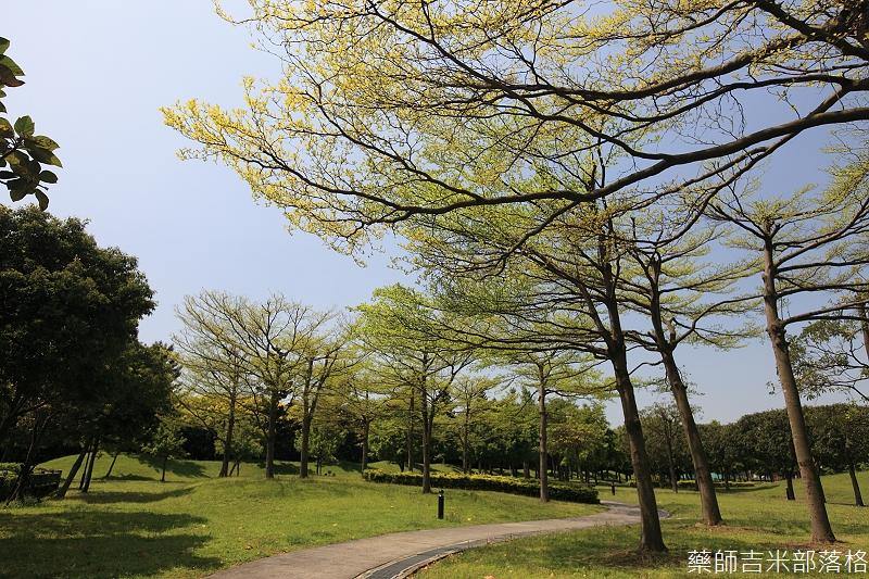 Park_242