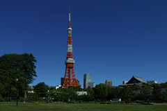 Jast a Perfect Day (guen-k) Tags: sigma tokyotower  shibapark  dp1merrill