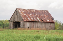 Forgotten (IRick Photography) Tags: wood old building abandoned field architecture barn rural vintage landscape wooden decay farm farming rustic barns rusty pasture forgotten rusted farms farmer decayed barnwood