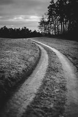 On my way (mripp) Tags: white black art nature grass germany dark way landscape outside bayern deutschland bavaria mono europa europe kunst natur lawn wiese monochrom landschaft weg periphery
