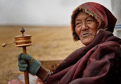 Cultivating compassion (nico3d) Tags: tibet amdo tibetan kham tibetanplateau