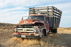 Scablands Express - Abandoned Truck - Washington State (Electric Crayon) Tags: usa history ford abandoned truck outdoors washington pacificnorthwest americanwest 1953 oldwest patrickmcmanus