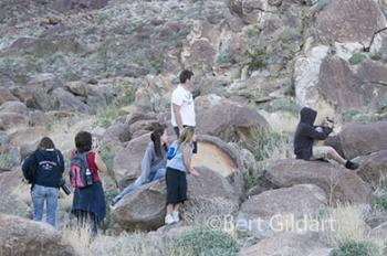 Students stop to admire the endangered Peninsular bighorn