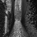 Alley {explored} thumbnail