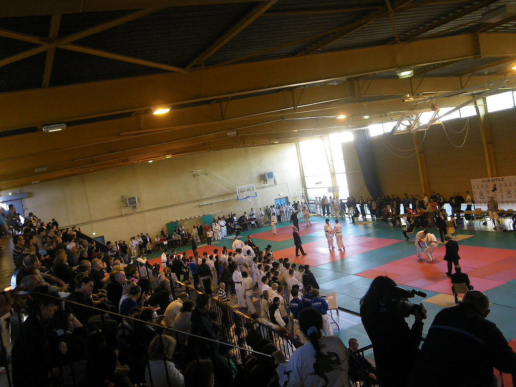 Tournoi Chat. ELECLERC 2011