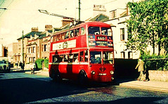 DB219  Church Road Willesden (Ron Fisher) Tags: trolleybus londontransport