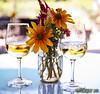 Cape May Vineyards - Apple Wine RSFW IMD_2266 (IndyMcDuff (Bellifemine Studios)) Tags: wine capemaynj applewine artisticflowers capemaywinery mindigtopponalwaysontop capemaywine me2youphotographylevel1