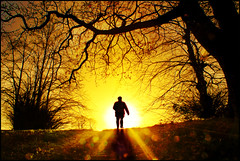 The golden path ahead (adrians_art) Tags: trees people sunrise golden woodlands shadows silhouettes sunburst flares
