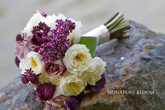 San Jose Wedding Florist, White & Purple Vintage Bouquet (Signature Bloom) Tags: pictures flowers wedding decorations flower floral vintage for design spring purple sweet designer events sanjose images tulip designs florist vendor siliconvalley bouquet weddings bridal pea decor peninsula southbay ideas lilacs weddingflowers bouquets weddingphotos floraldesign sanjoseca florists specialevents astrantia weddingideas lambsears bridalflowers weddingdecorations weddingbouquets gardenrose floraldesigner flowerdesign 95121 95135 weddingflorist purplewedding weddingfloral purplebouquets weddingvendor amnesiarose flowersforwedding whitebouquets sanjoseflorist vintagebouquets springbouquets sanjoseweddingflowers signaturebloom patiencegardenroses wwwsignaturebloomcom sanjoseweddingflorist bridalflorist weddingfloristsanjoseca whiteandpurplewedding