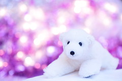 Happy Holidays! (*Sakura*) Tags: christmas pink white macro japan tokyo purple  sakura   holidayseason  whitebear