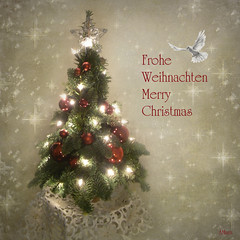 Christmas (Mara ~earth light~) Tags: christmas winter texture love photoshop peace expression dove christmastree blessing creativecommons holynight ourtime moodcreations photographymypassion mara~earthlight~ christmaspicturegallery