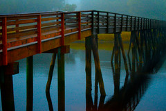 A Foggy Day at Footbridge Beach - in explore, front page (SunnyDazzled) Tags: bridge cold reflection beach weather fog foot coast wooden footbridge path maine foggy wells coastal handheld pilings pylons highiso ogunquit